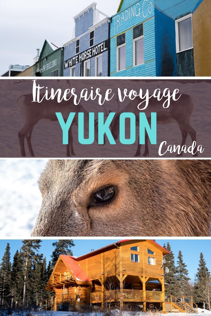 Quoi faire en voyage au Yukon, à Whitehorse et dans les environs