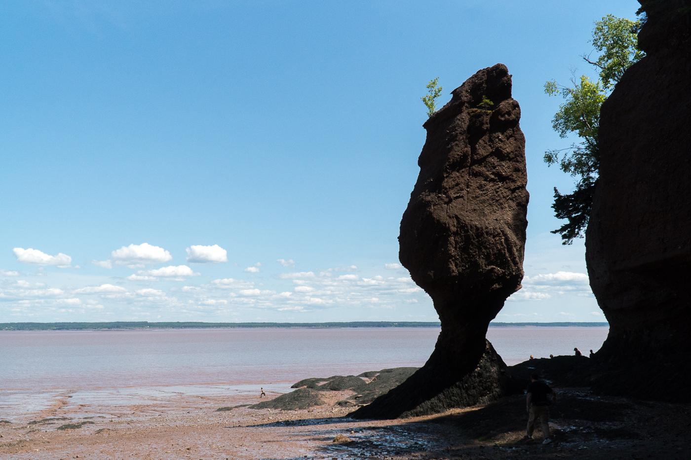 Incontournable à voir au Canada, Hopewell Rocks