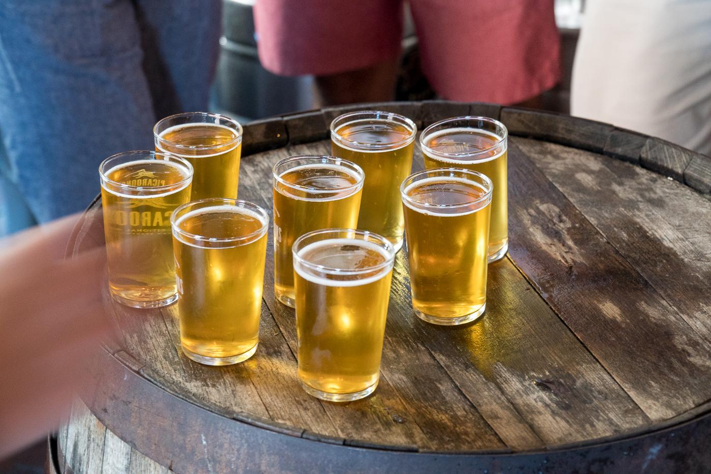 Verres de bière - Dégustation beer tour à St-John