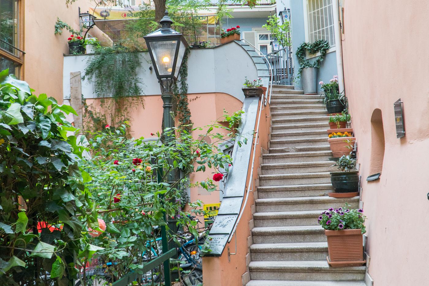 Ruelle remplie de plantes à voir à Graz en Autriche