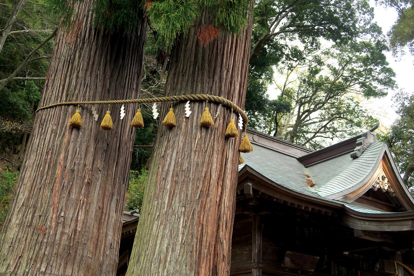 Arbre à prièere - Voyager au Japon en automne