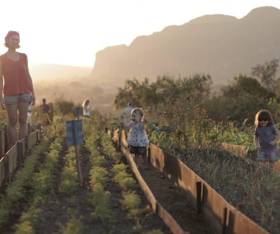 Enfants et mère dans le jardin à Cuba
