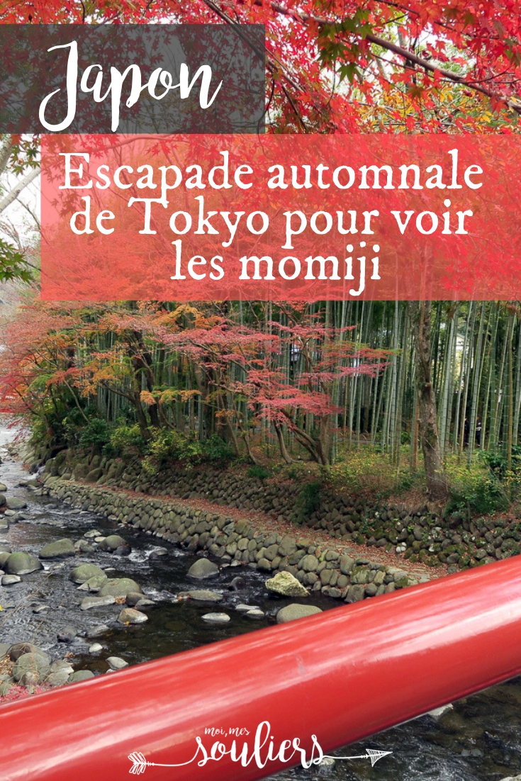 Momiji ou couleurs d'automne au Japon