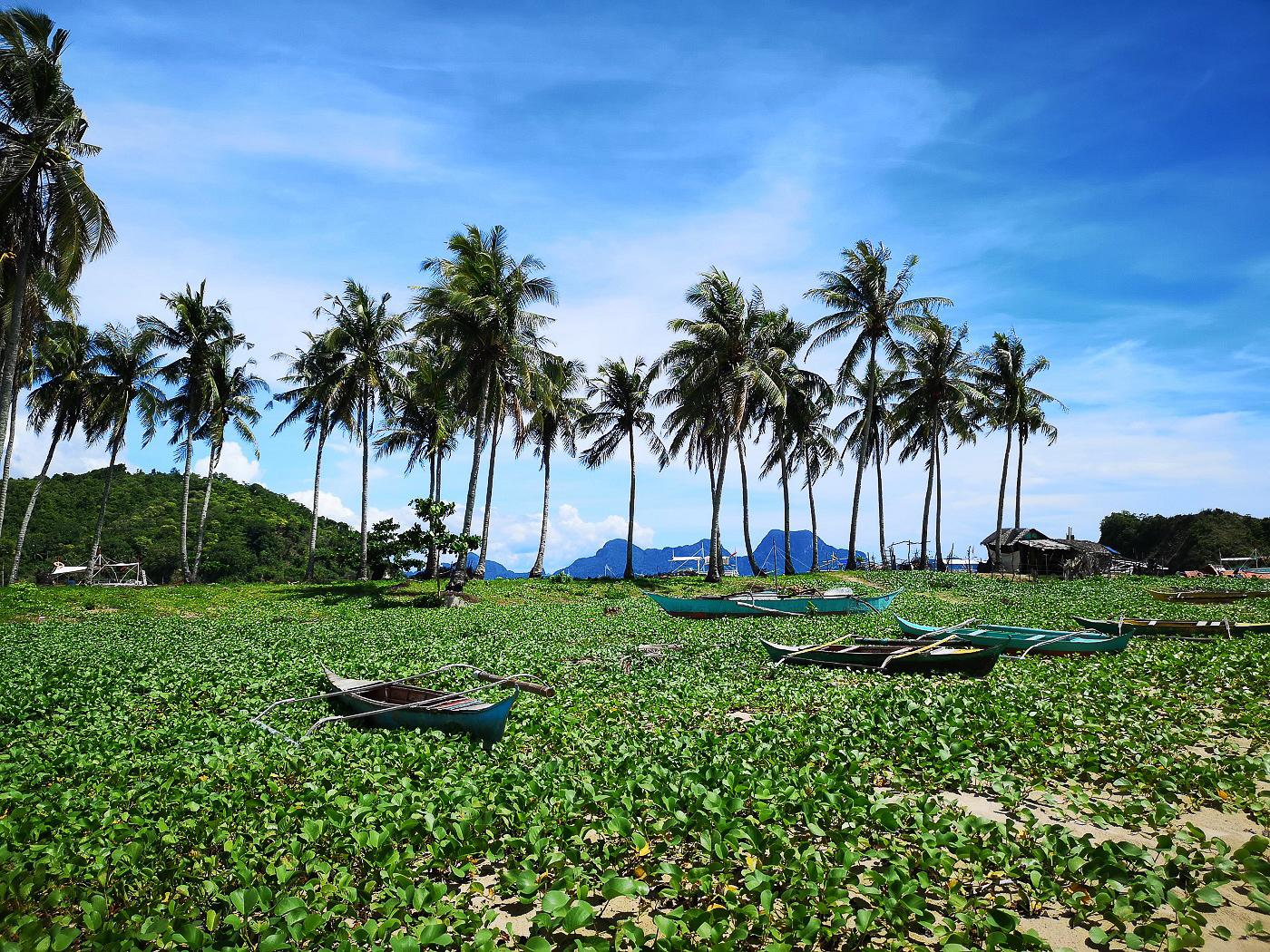 Nature des Philippines