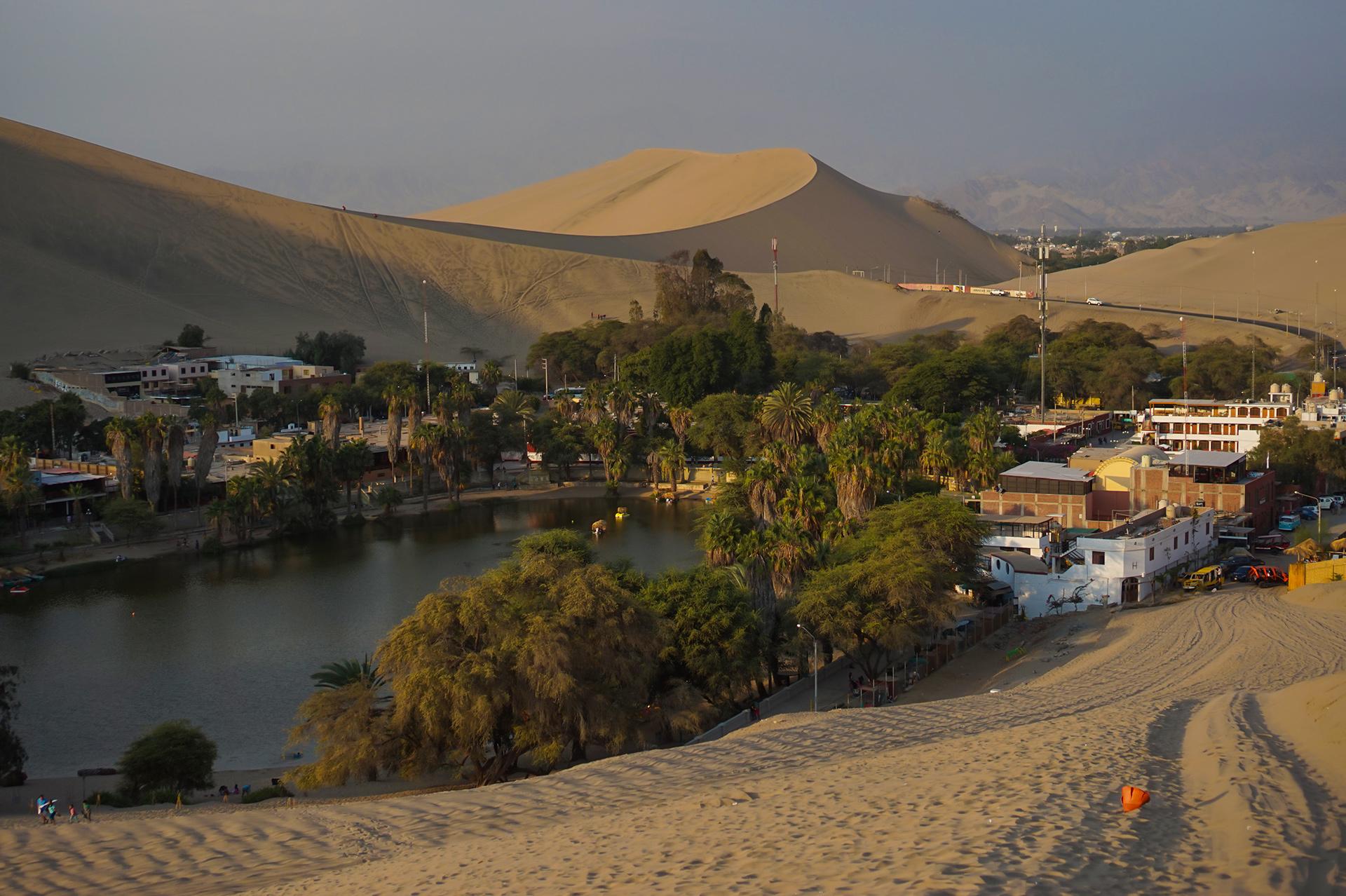 Désert et oasis d'Ica