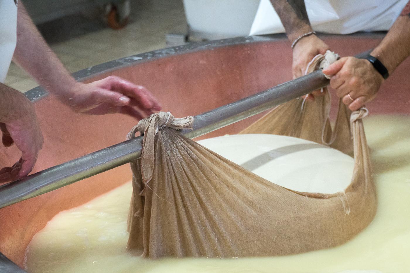 Meule de parmigiano reggiano dans petit lait