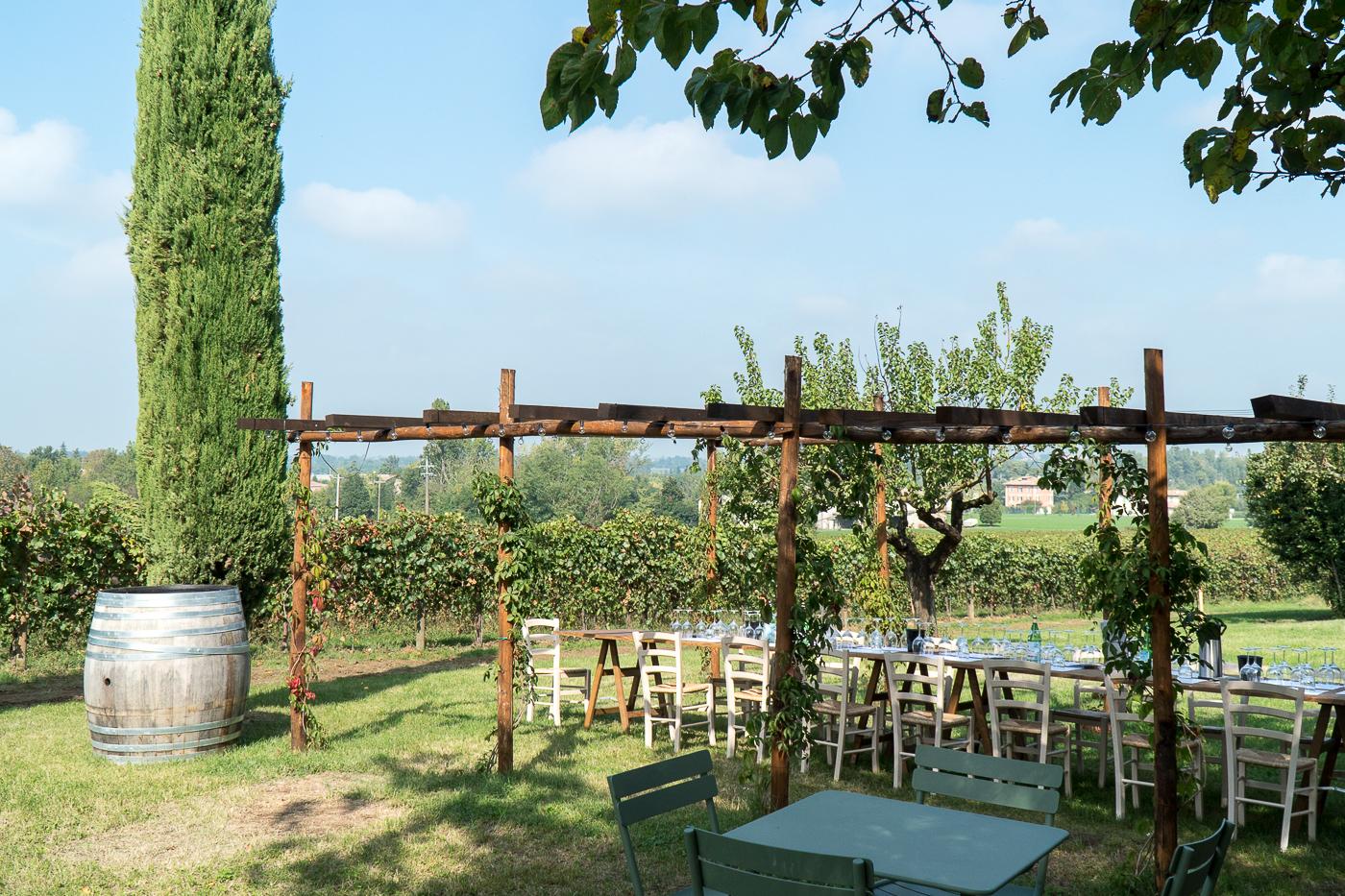 table dans le vignoble Venturini Baldini aux vendanges en Italie