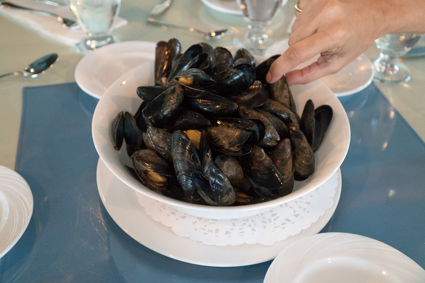 Wind and Reef - Moules fraîches