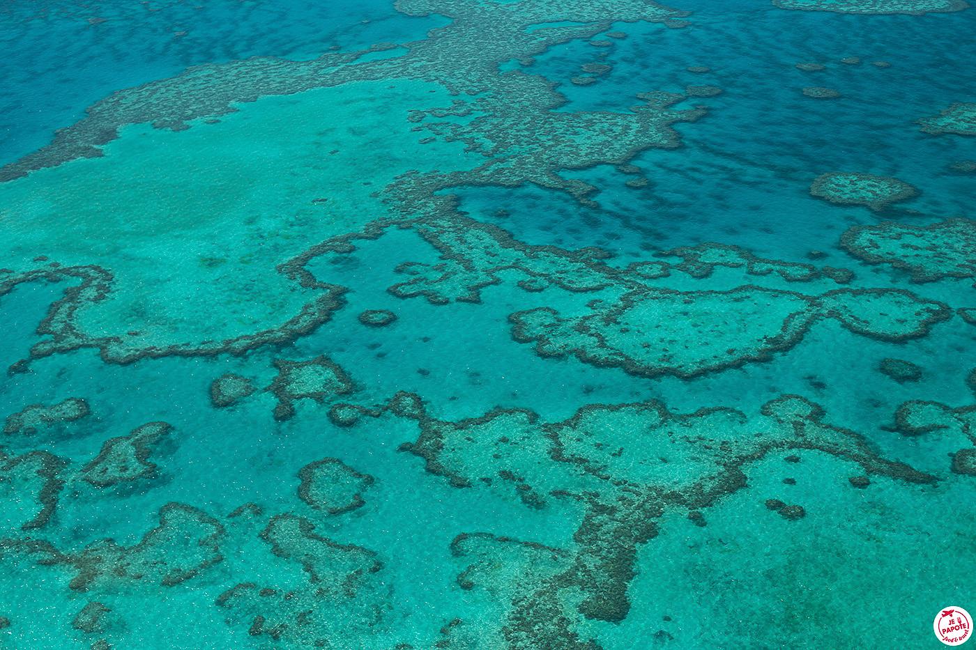 Grande barrière de corail en voyage en Australie en 2020
