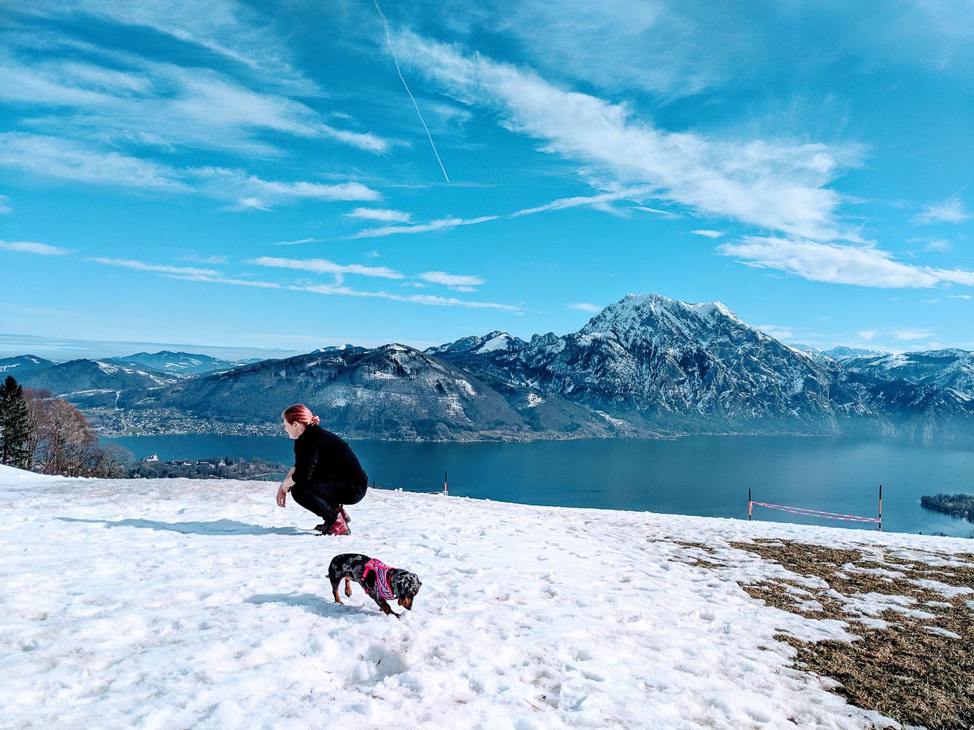 Voyager avec son chien en Autriche en 2020 par Myriam Jessier