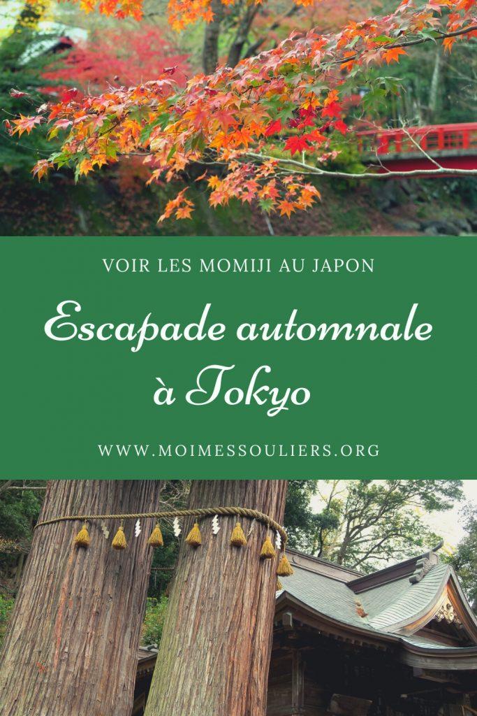 Escapade à Tokyo, Japon - Momiji