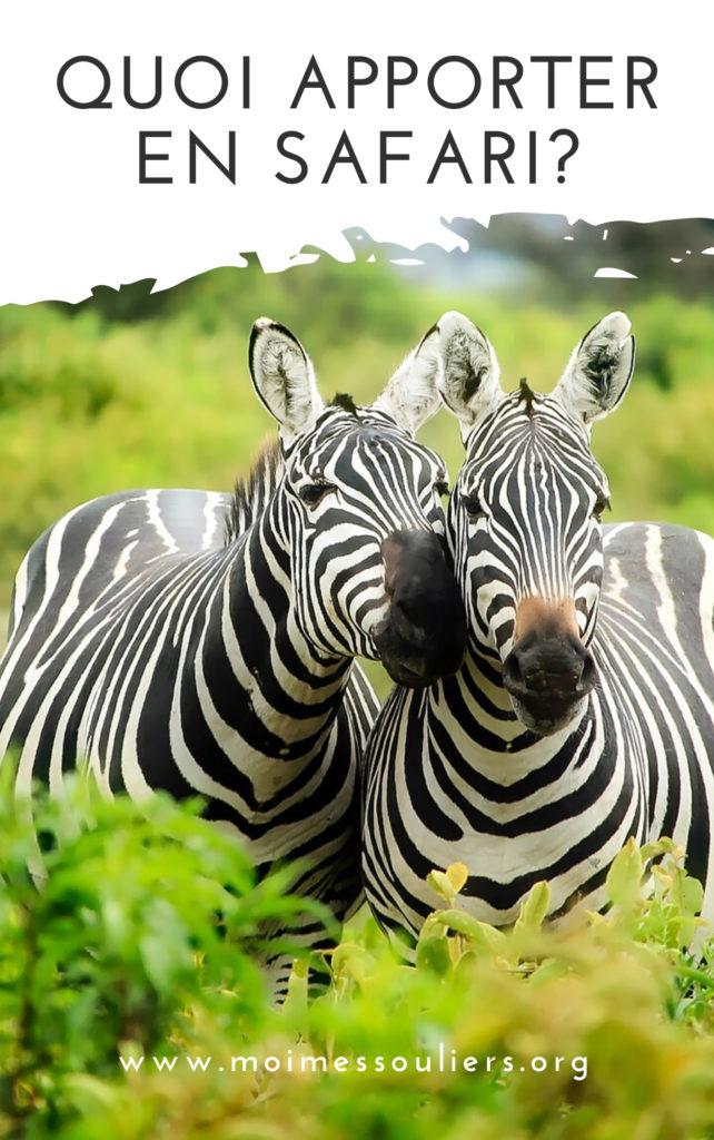 Quoi mettre sans ses bagages en safari?