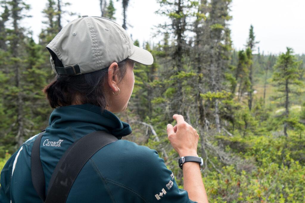 Guide Parcs Canada de l'archipel de Mingan