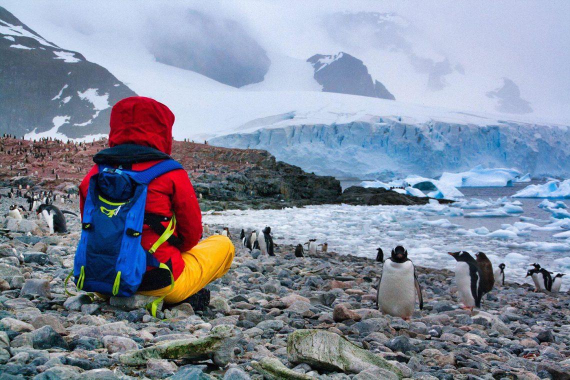 Arianne avec les pingouins de l'Antarctique