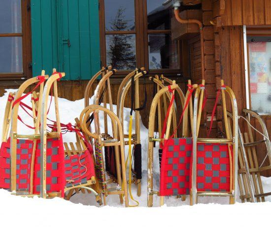 Quoi faire cet hiver au Québec - luge alpine - Hans Braxmeier de Pixabay