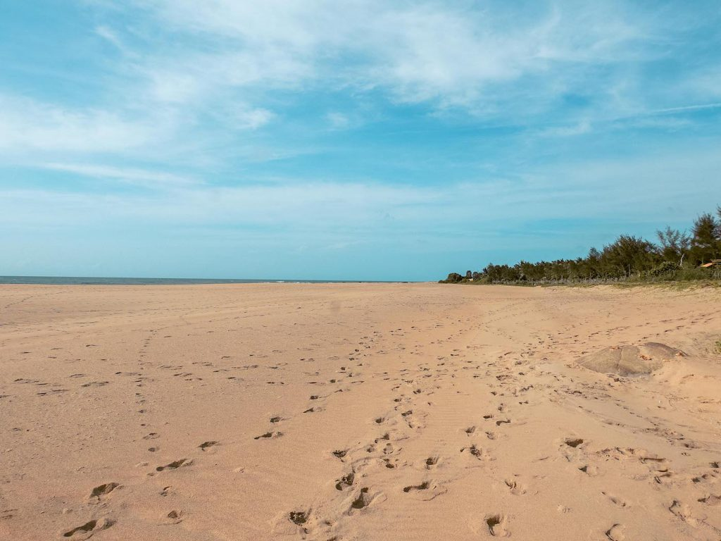 Voyage au Sri Lanka en 2021 - Tongs et Sri Lanka