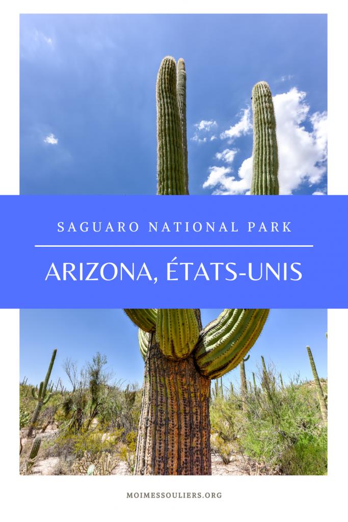 Visiter Saguaro National Park en Arizona, États-Unis