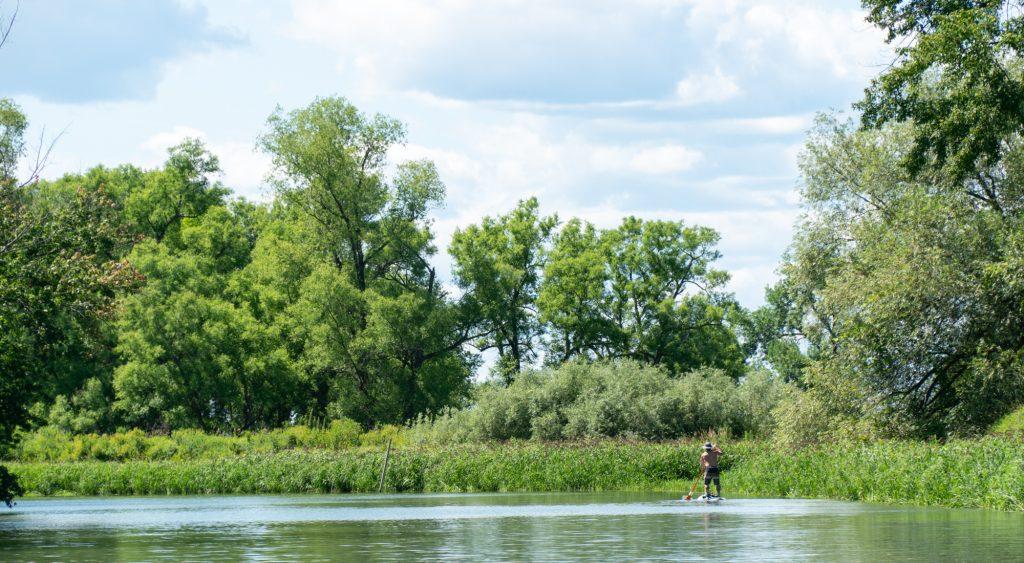 Kayak et stand-up paddle dans le marais de Sorel