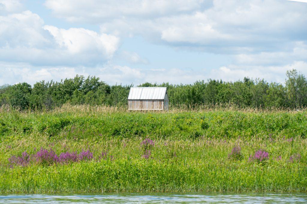 Maison dans le marais de l'archipel